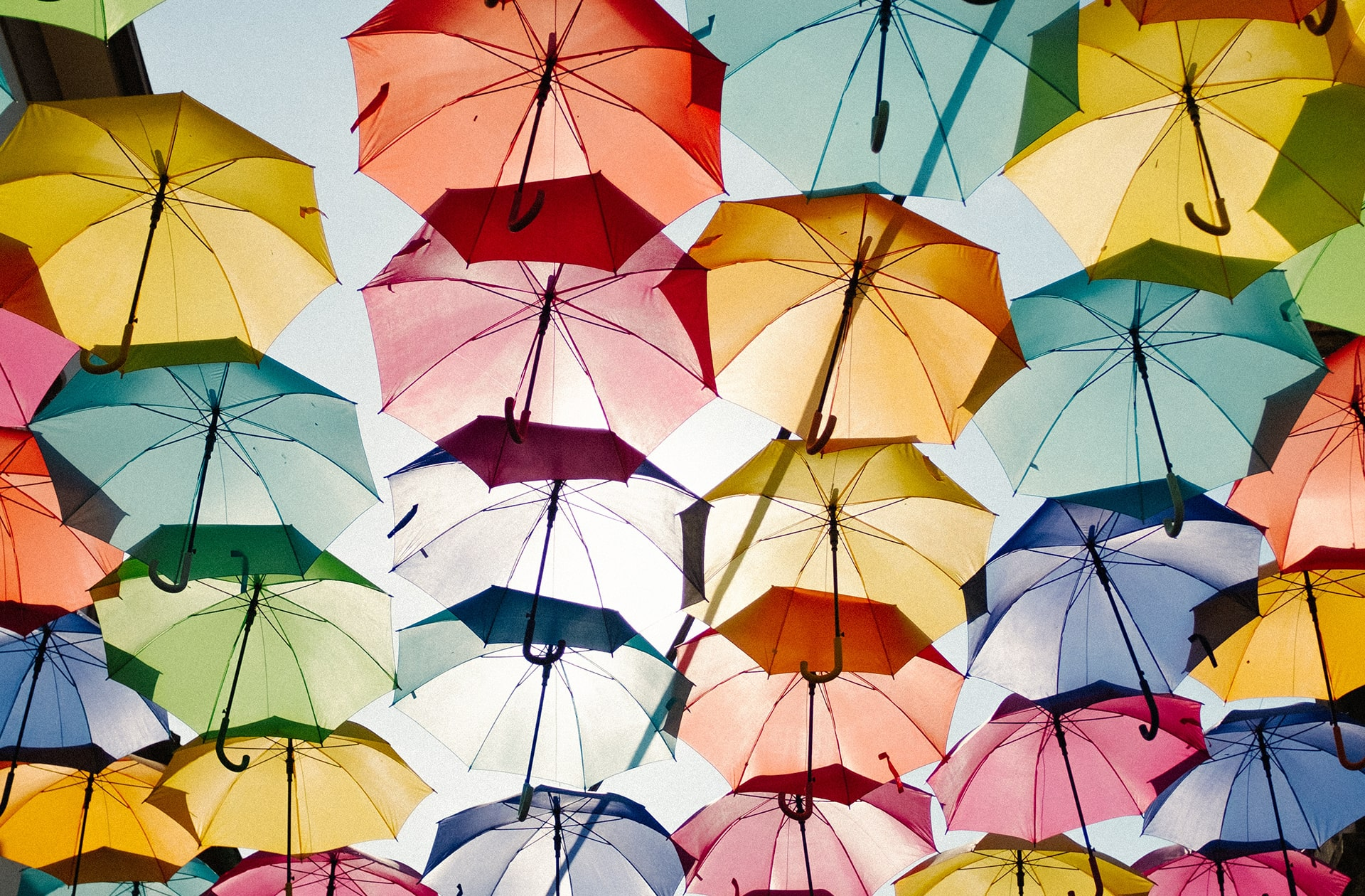 Protecting umbrellas in multiple colors